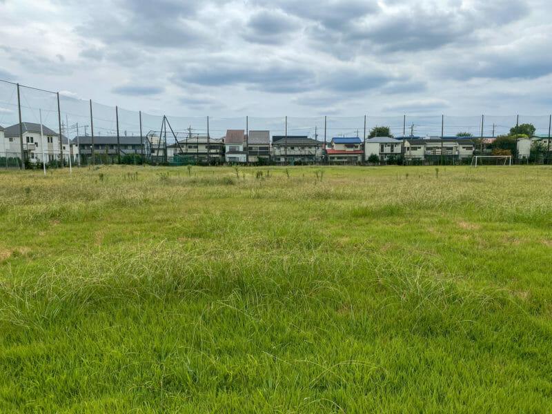 芝生が刈り込まれず雑草が繁茂してしまった芝生グラウンド