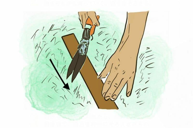 高さを整えながらハサミで芝刈りする方法を説明しています