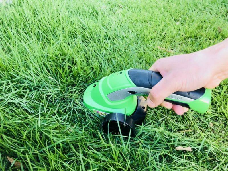 芝刈りバリカンで芝を刈っている写真