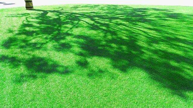 晴れた日の人工芝の写真