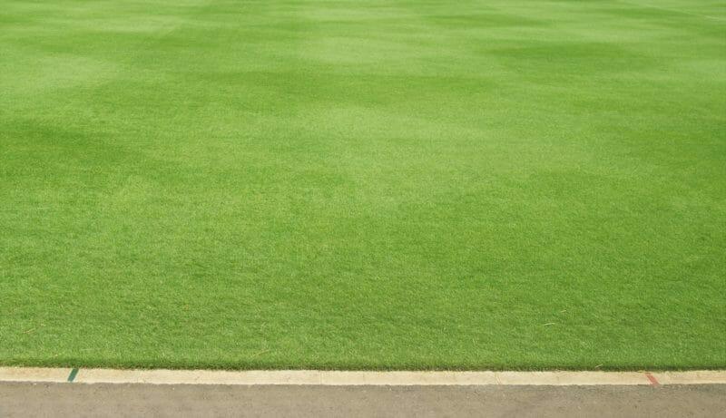 広く美しい人工芝