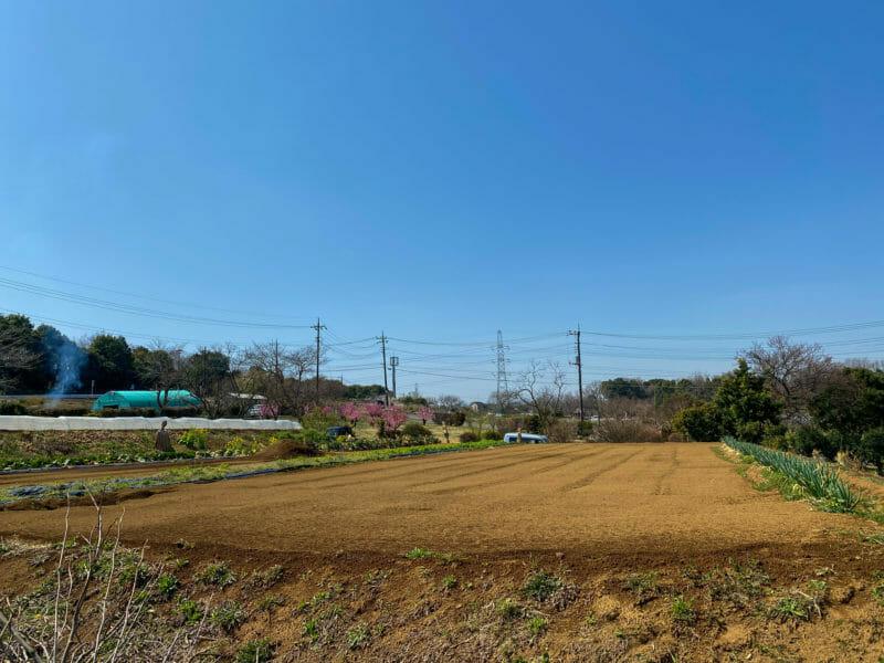 綺麗に整備された畑の写真