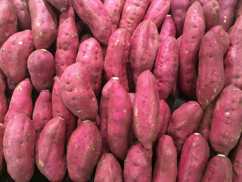 サツマイモ(甘藷・かんしょ)の画像