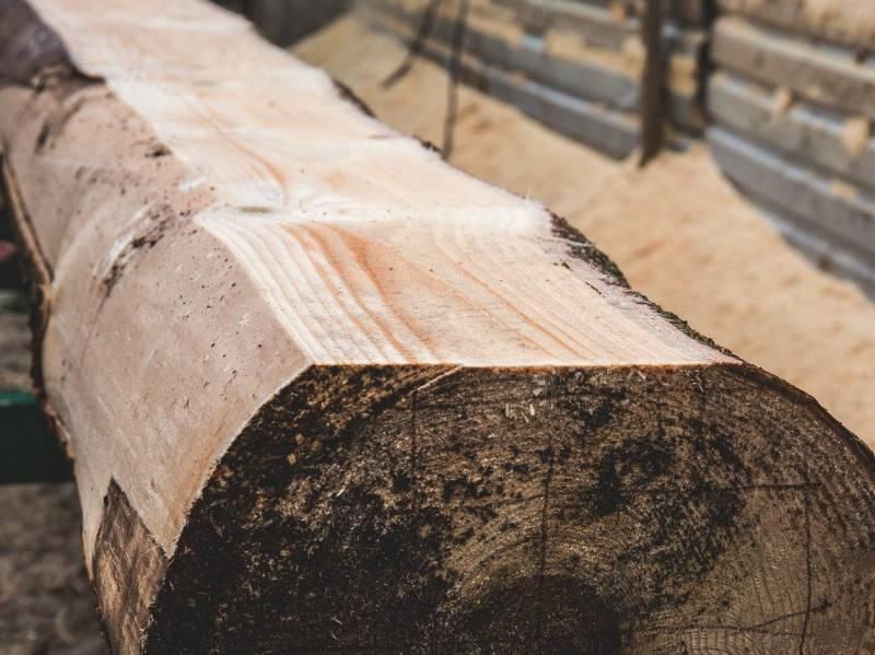 チェンソー製材機によって、立木から立派な材(timber)にすることができる