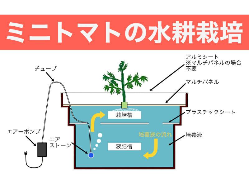 ミニトマトの水耕栽培のバナーです。