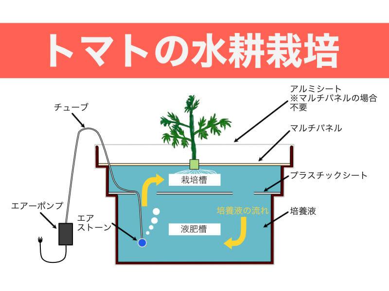 トマトの水耕栽培のバナーです。