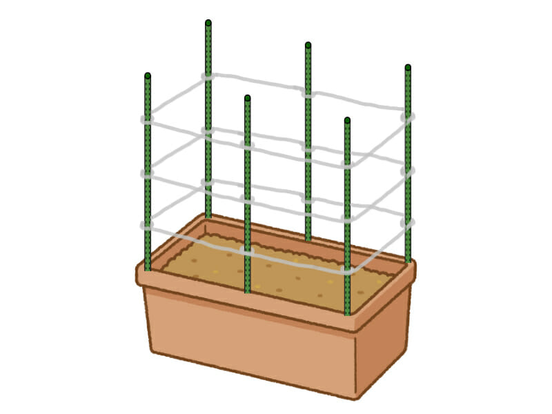 プランターにおける支柱の立て方で、あんどん式に組んだ様子を表した画像です。