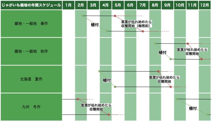 ジャガイモの栽培スケジュールのカレンダーです。
