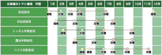 北海道のトマト栽培の作型の例です。