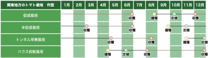 関東地方のトマト栽培の作型の例です。