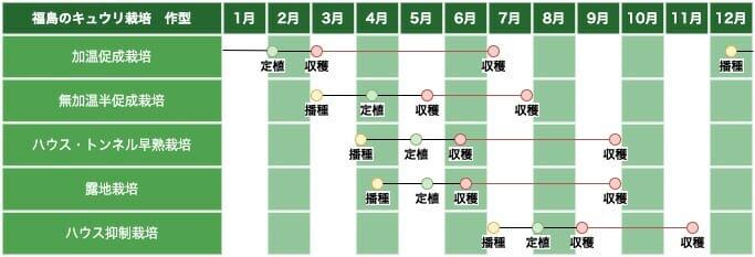 東北地方(福島)のキュウリ栽培の作型の例です。