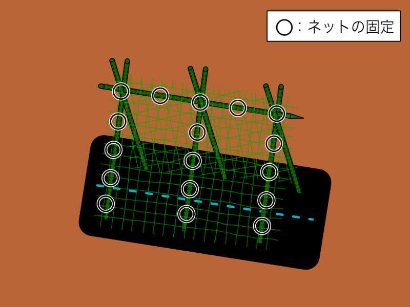 園芸ネットの張り方を示した画像です。