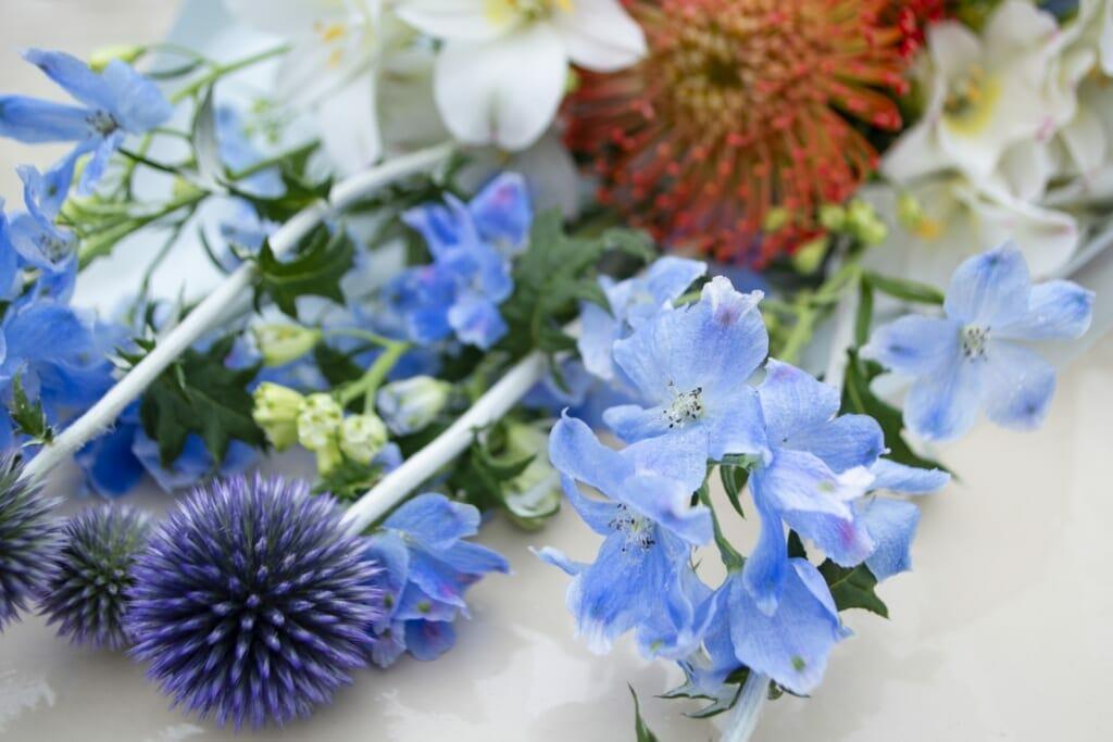 青いアマリリスと花束
