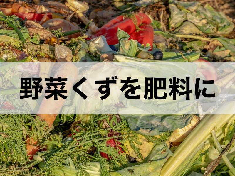 野菜くずを肥料として活用する方法を記載した記事のバナーです。