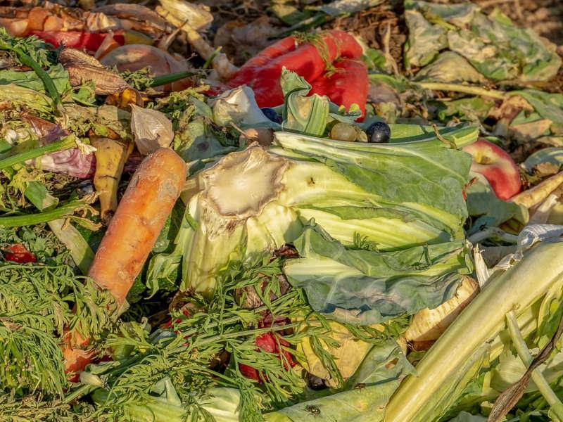 野菜くずの画像です。