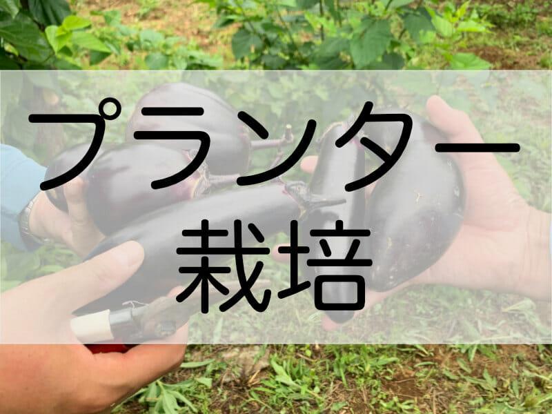 ナスのプランター栽培の記事のバナーです。