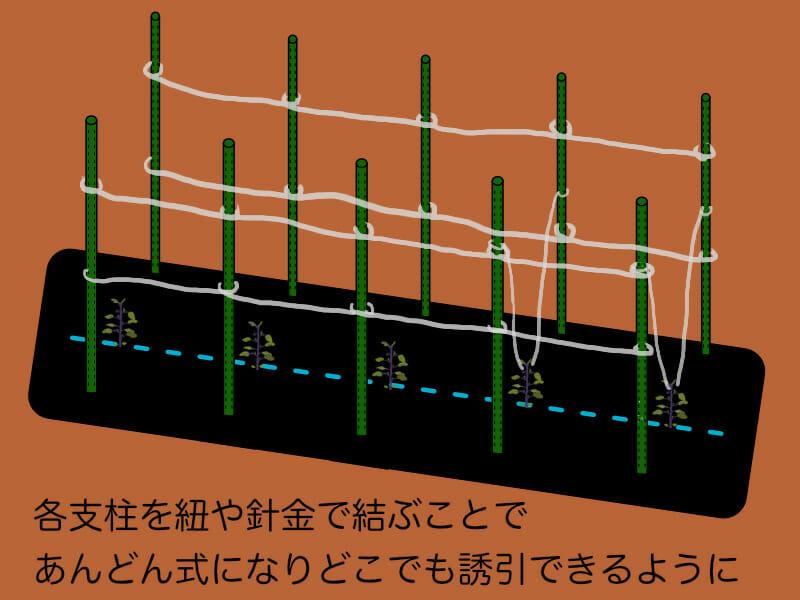 あんどん式を利用したナスの支柱の立て方、整枝方法を示したイラストです。