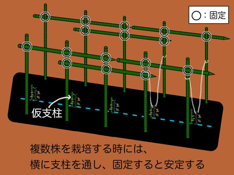 直立式の立て方に対して、強度を持たせるために横に支柱を通し固定する様子を示した画像です。
