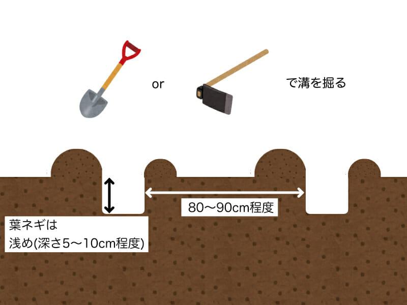 葉ネギ(万能ねぎ、九条ネギ)の植え溝の掘り方を示した画像です。深さは浅めで5cm〜10cm程度とし、スコップやクワで掘ります。溝と溝の間は80cm〜90cm程度あけます。