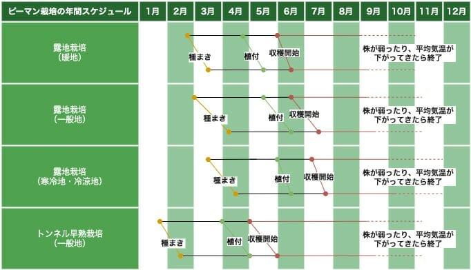 ピーマンの栽培スケジュールを示した画像です。